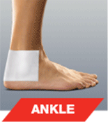 Ankle image